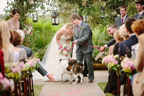 southern-wedding-pets-in-wedding